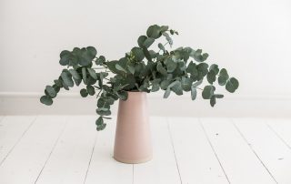 Eucalyptus i vas