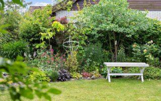 Trädgård - Flytta till landet