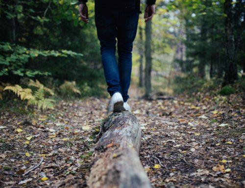 Ta hjälp av naturen för en bättre hälsa